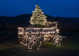 Image result for holiday photos of st helena california main street