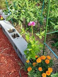 garden weed fabric bark hay pathways weed barrier alternatives best weed fabric for vegetable garden