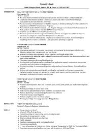 Underwriting Resume Examples Loan Underwriter Resume Samples Velvet Jobs 17