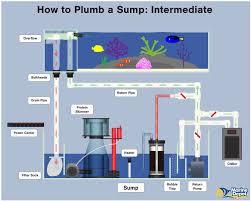 Refugium Sump Design How To Plumb A Sump Basic Intermediate And Advanced