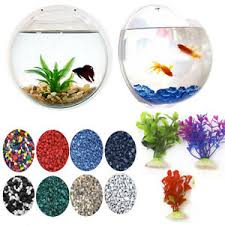 How To Decorate Fish Bowl Wall Hanging Fish Bowl Plant Decoration Bubble Tank Aquarium 1