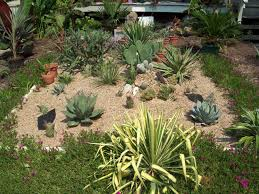 Small Picture Cactus Garden Designs Picture On Fancy Home Interior Design and