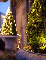 outdoor fairy lighting. Outdoor Fairy Lighting. Warm White String Lights Lighting N