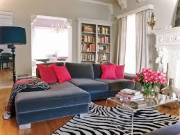 stylish furniture for living room. Blue Couch Living Room Ideas Unique Inspiring Design Couches Rooms Stylish Furniture For