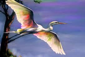 a white heron essay a white heron essay