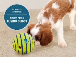 insider picks dog toys ing guide has badge 4x3