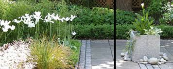 Small Picture Profile Garden Designer Ealing West London Garden Design