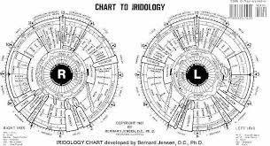 Dr Bernard Jensen Iridology Chart Dr Bernard Jensen Iridology Chart Iridology Chart Health