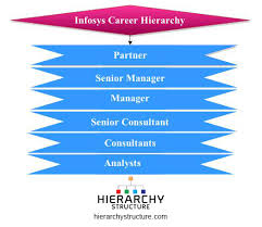 Infosys Career Hierarchy Chart Hierarchystructure Com