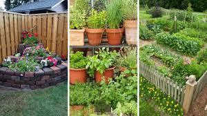 10 Backyard Vegetable Garden Ideas Youtube