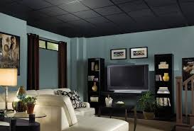 stylish black drop ceiling