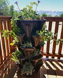 garden greens black plant pots and
