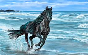running black horse awesome image jpg