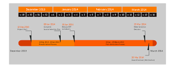 Project Plan Timeline Request For Proposal Rfp