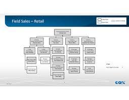 Business Organisational Chart Sample Organizational Retail