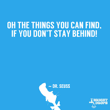 Dr Seuss Quotes About Love Delectable 48 Dr Seuss Quotes That Can Change The World Bright Drops
