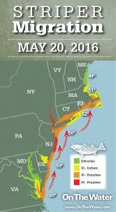 Striper Migration Map May 20 2016 Article Fri 20 May