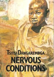 Image result for TSITSI DANGAREMBGA