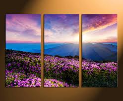 3 piece canvas print. Wonderful Print 3 Piece Canvas Wall Art Home Decor Landscape Huge Pictures Purple  Photography On Piece Canvas Print C