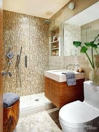 Bathroom Shower Tile Ideas Delectable Pinterest Bathroom Shower Ideas Websitio