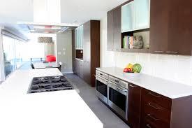 piedmont mid century modern kitchen cabinets