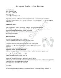 Modern Resumes Magnificent Cv Template South Africa Resumes Free Modern Resume Template Cv Word