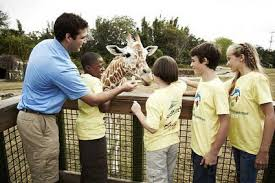 busch gardens summer camp. Fine Busch Busch Gardens Summer Camp Find Your World And