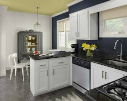 buy kitchen cabinets and organize the in best kitchens with white cabinets and blue walls n35 with