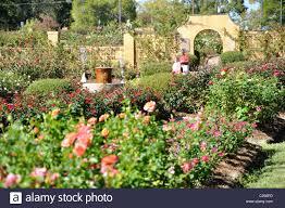 rose garden tyler texas largest rose garden in the us