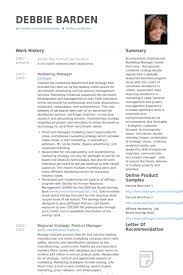 Sales Executive Sample Resume 44 Fantastic Technology Sales Resume Examples
