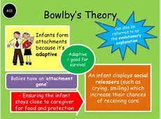 order custom written essays online bowlby psychology  slideshare net