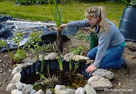 e up your backyard garden with this small diy wildlife pond awesomejelly com