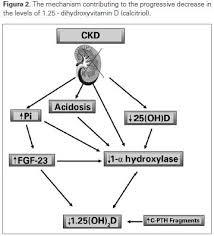 vitamin d deficiency in ckd