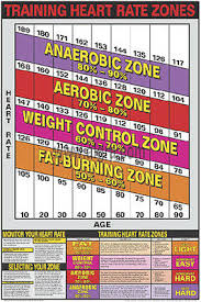 Cardiovascular Fitness Training Heart Rate Zones Professional Wall Chart Poster Ebay