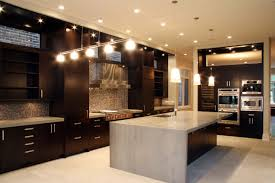 Custom Metal Cabinets Enchanting Black Mahogany Wood Custom Kitchen Cabinets Stainless