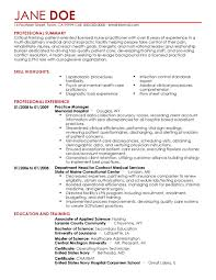 Samples Of Professional Summary For A Resume Sample Professional Summary For Nursing Resume Inspirationa 33