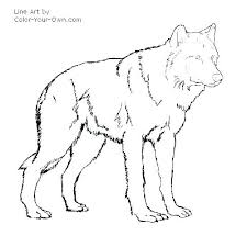 Wolf Pup Coloring Pages Wolf Pup By On Campoamorgolfinfo