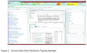 Epic Charting Successful Implementation Of Electronic Trauma Documentation