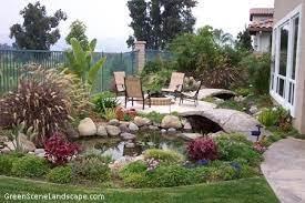 backyard pond tips from an expert