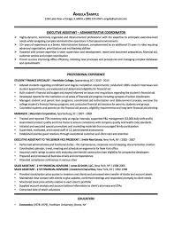 Resume Samples Chicago Expert Non Profit Executive Director