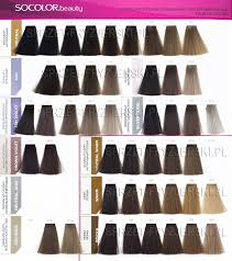 Image Result For Matrix Hair Color Swatch Book In 2019