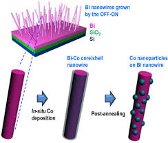 schematic illustration for the process of forming co na open i schematic illustration for the process of forming co nanoparticles on the surface of bi nanowires