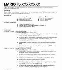 Definition Of Resume For A Job Qlikview Developer Resume Sample Developer Resumes