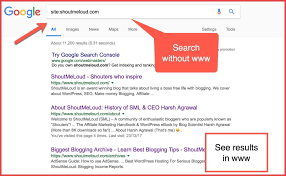 What is Duplicate Content Issue In WordPress & Fix For SEO
