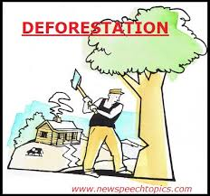 deforestation causes effects new speech essay topic deforestation causes effects