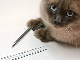 Cat Check List Under Fontanacountryinn Com