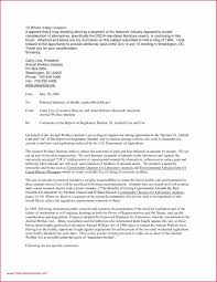 Modern Executive Assistant Resume 6 Executive Assistant Resume Sample 2015 Mael Modern Decor