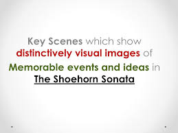key scenes which show distinctively visual images of ppt video  1 key scenes which show distinctively visual images of memorable events and ideas in the shoehorn sonata