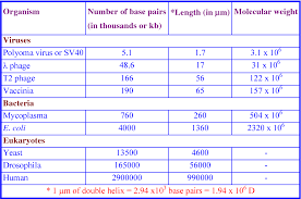 Table 3 From Biomolecules Introduction Structure And