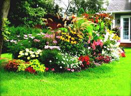 Small Picture 24 Flower Garden Ideas Full Sun Perennials Flowers Perennial